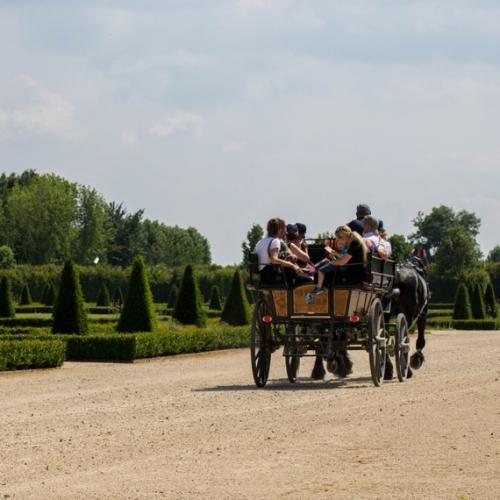 La Carrozza a cavallo. Foto di Arianna Parola