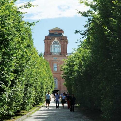 Ingresso alla Reggia, Torre del Belvedere
