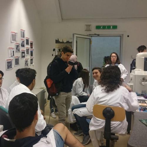 Il gruppo Diagnostica al lavoro