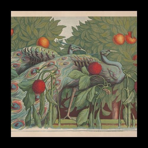 Alfredo Muller, Les Paons, 1903