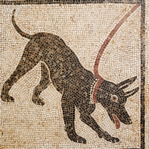Arte Romana, I sec a. C., Cave Canem, mosaico
