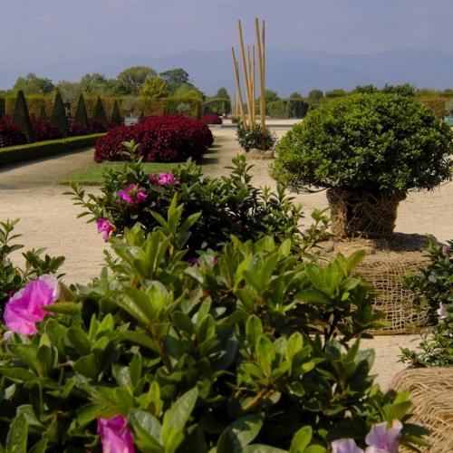 Corollaria - Allestimento nel Gran Parterre
