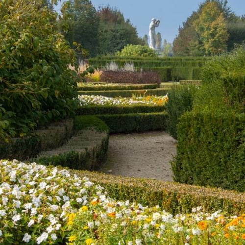 Giardino nell'Allea Reale. Foto di Dario Fusaro