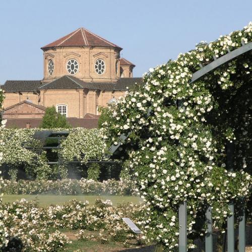 Il Giardino delle Rose della Reggia di Venaria e la Cappella di Sant'Uberto