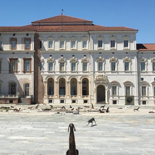Branco di Velasco Vitali nella Corte d'onore della Reggia di Venaria