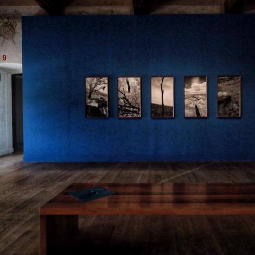Paolo Pellegrin. Una antología. La exposición