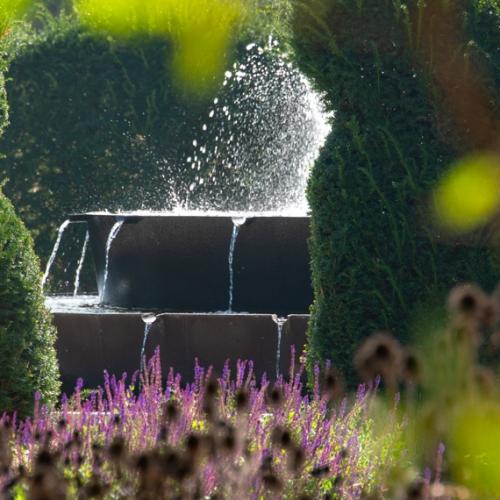 Potager Royal, giochi d'acqua - Foto di Dario Fusaro