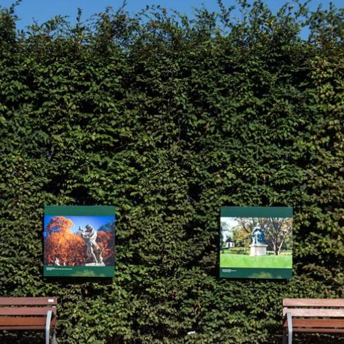 Viaggio fotografico nei Giardini delle Residenze Reali d'Europa